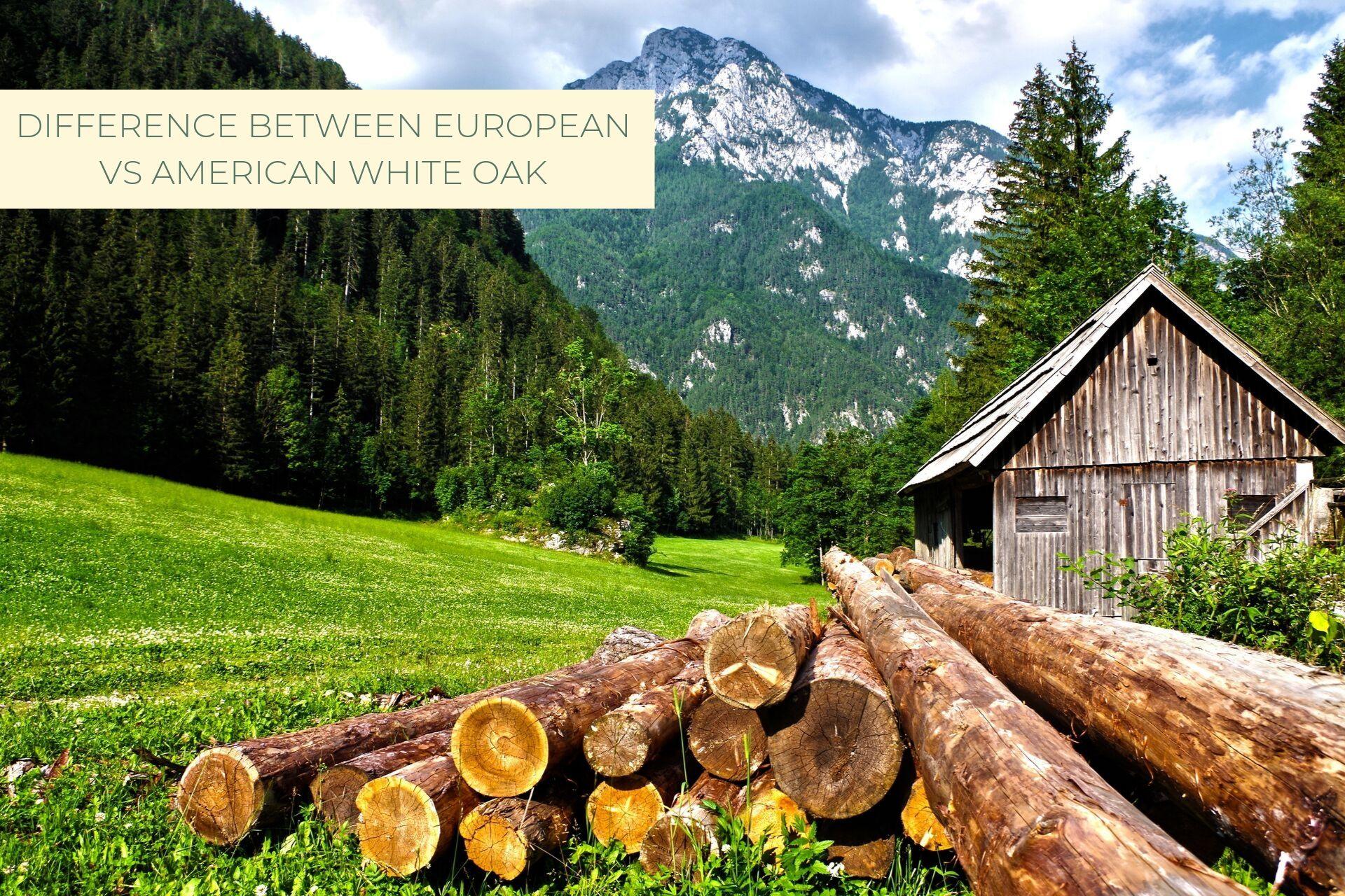 Castle Bespoke_ Difference between European v_s American White Oak